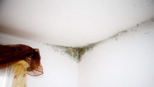 schimmel vermeiden so klappt s. Black Bedroom Furniture Sets. Home Design Ideas